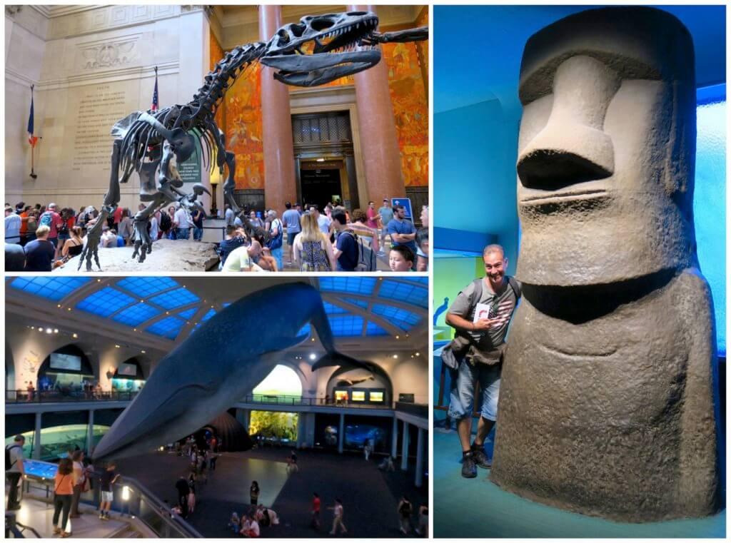 Risparmiare a New York con la CityPASS: American Museum of Natural History