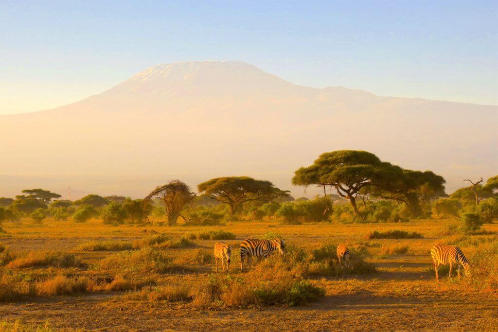 Alba nel mondo - Kenya