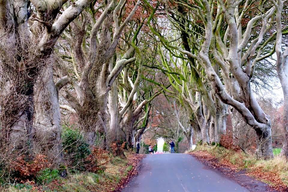 Irlanda del Nord