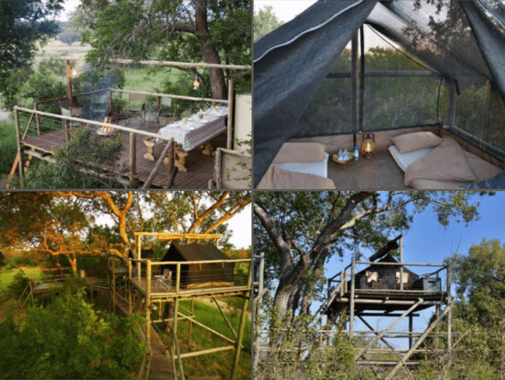 Dormire nel Kruger National Park - Plains Camp - Sleepouts