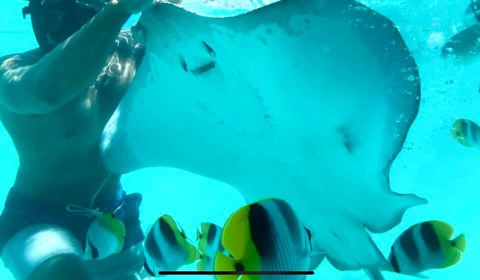 Bora Bora - Escursione con le razze